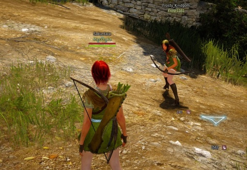 bdo-two-archers